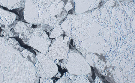 La Antártida está perdiendo el hielo equivalente a 36.000 millones de elefantes. Cada año
