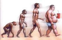 Los gordos producen menos