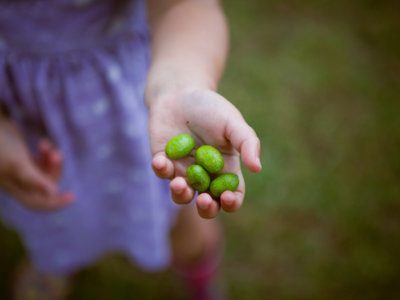 Un niño de dos años casi muere atragantado por una aceituna, ¿qué hacer en estos casos?