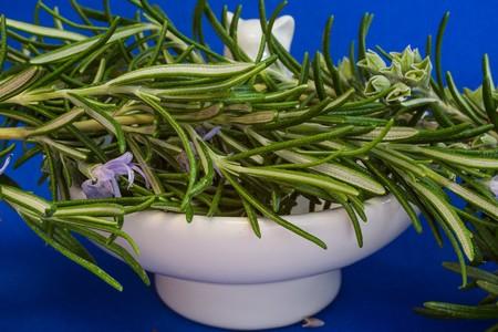 Rosemary 1409063 1280