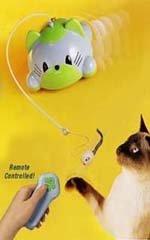 Ejercitador de gatos