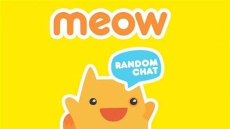 Meow 2988533b 1