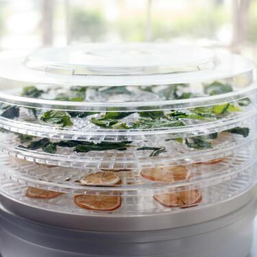 Deshidratadora de alimentos: ¿cuál es mejor comprar? Consejos y recomendaciones