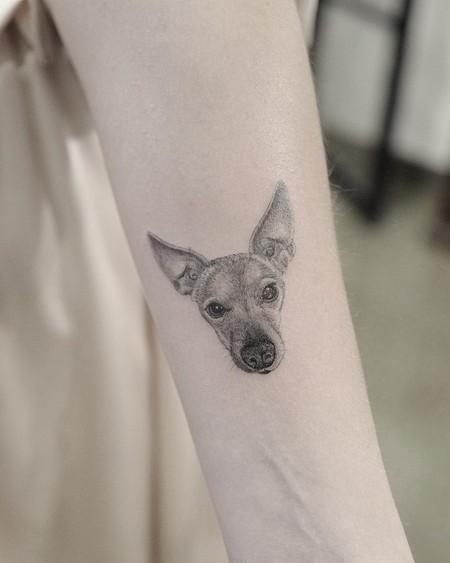 Dr Woo Tattoo Carlotta Oddi