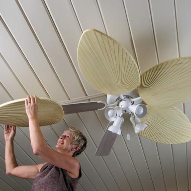 Palm-Frond: cambia la imagen de tu ventilador