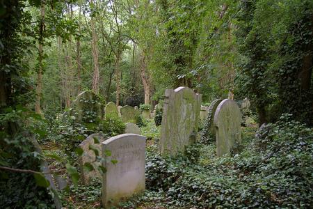 El Cementerio de Highgate, Londres