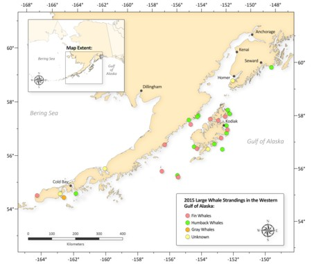 Ballena Muerta Alaska Mapa