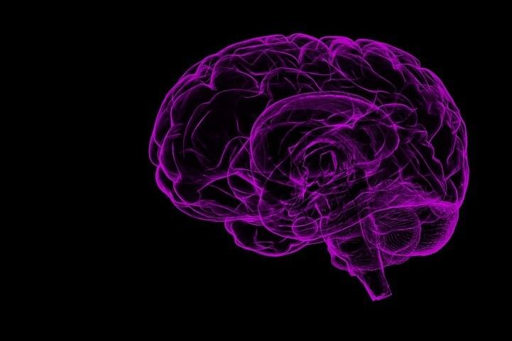 estudio sobre la dieta cetosisgenica en pacientes con alzheimers