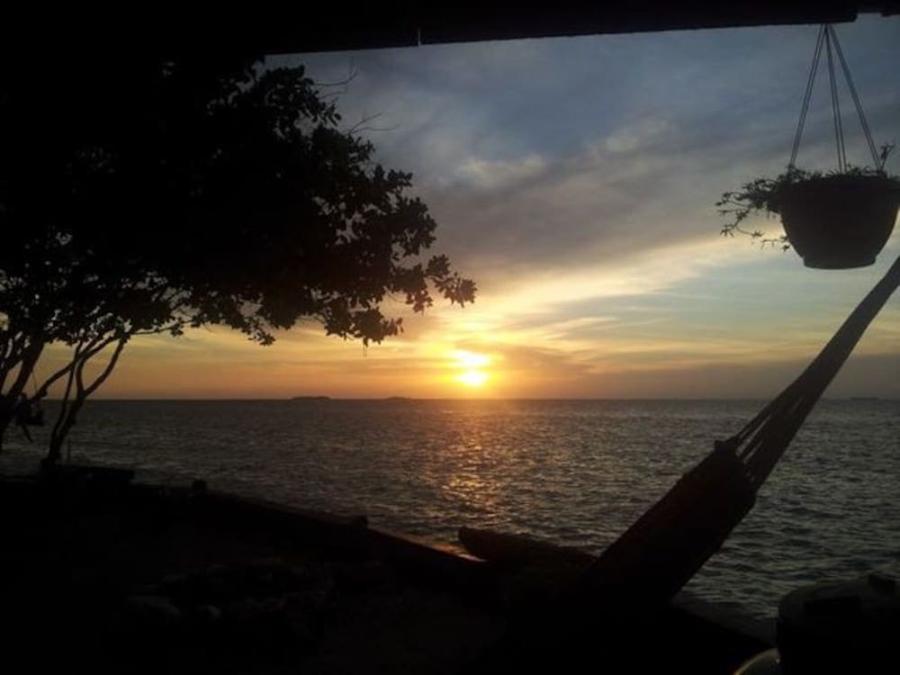 Foto de Bird Island, mini isla en Belice (5/15)