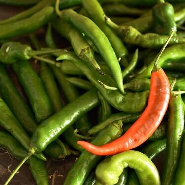 Beneficios del chile serrano para tu salud. Ayuda a bajar de peso