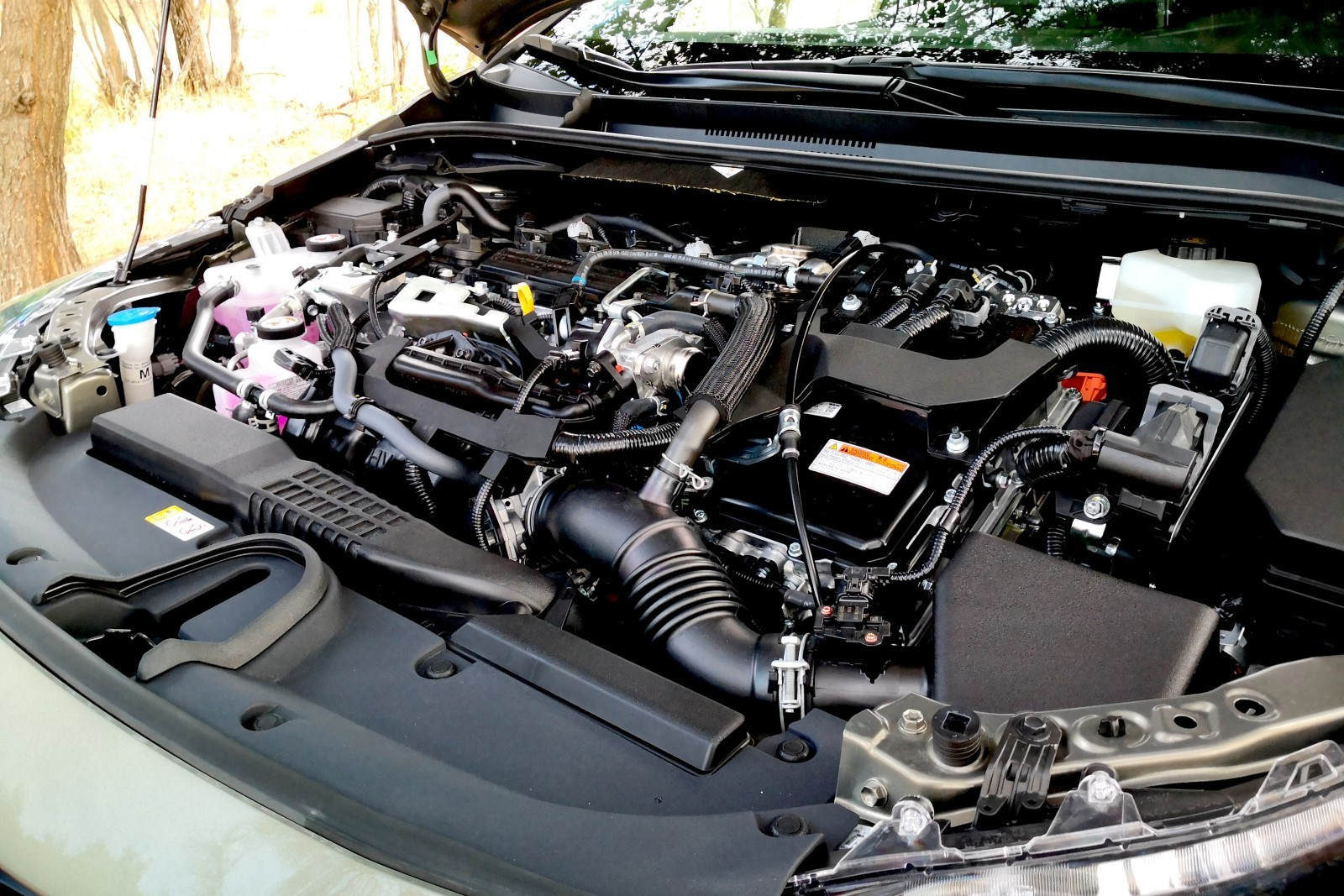 Foto de Toyota Corolla Trek - Imágenes exteriores (29/31)