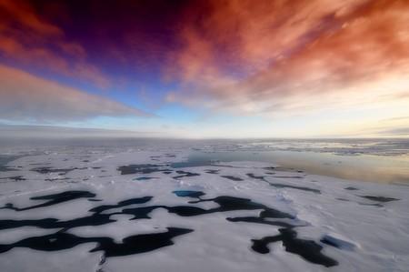 Bacterias vivas en el hielo polar, observadas directamente por primera vez