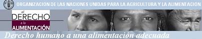 Derecho humano a una alimentación adecuada, nuevo portal de la FAO