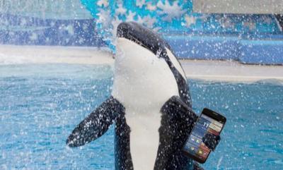 Google Shamu, futurible Nexus 6, aparece en Antutu junto con unas impresionantes especificaciones