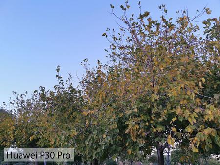 Huawei P30 Pro Auto Dia 02