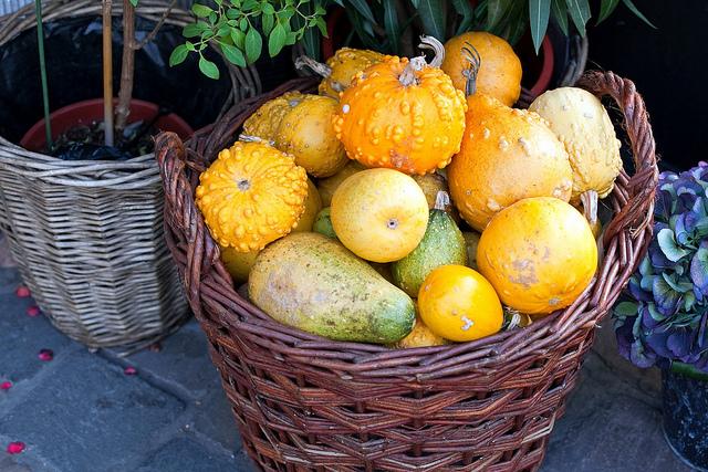 Alimentos de otoño, calabazas