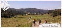 Guía del Camino del Santiago: Camino del Norte