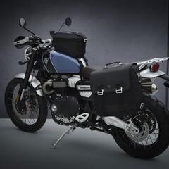 Foto 31 de 69 de la galería triumph-scrambler-1200-2021 en Motorpasion Moto