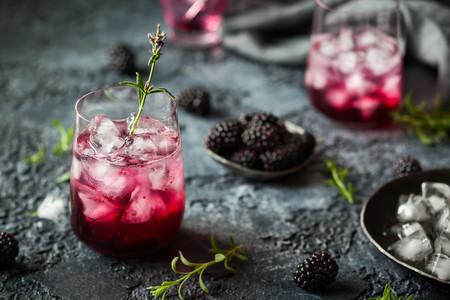 Blackberry Gin Fizz