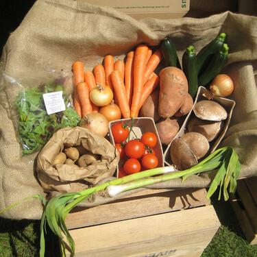 ¿Cuáles son los beneficios de comer orgánico?