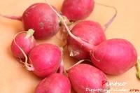 Propiedades nutricionales del rábano
