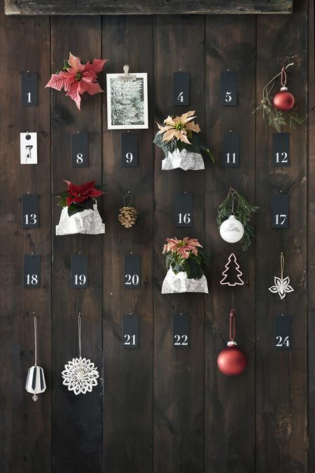 2016 Poinsettia Adviento Calendario 01 Es