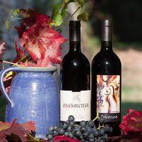 Conoce el vino que llevas a la mesa a través de su etiqueta