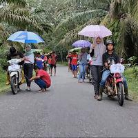Del Michael Knight yayo al Dani 'Pendosa' asiático: cinco vídeos de motos que te alegrarán el día