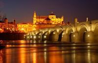 Feria del Libro Antiguo de Córdoba ¡Estamos que no paramos!