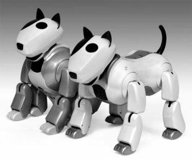 Genibo, tu mascota-robot