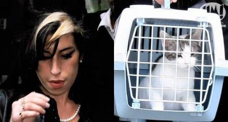 Amy Winehouse: la loca de los gatos