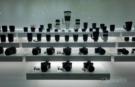 El mercado japonés de cámaras digitales con sensor full frame empieza a notar los últimos lanzamientos de Canon y Nikon