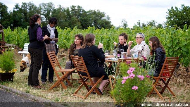 Enoturismo en el valle del Loira - domaine de la Folie