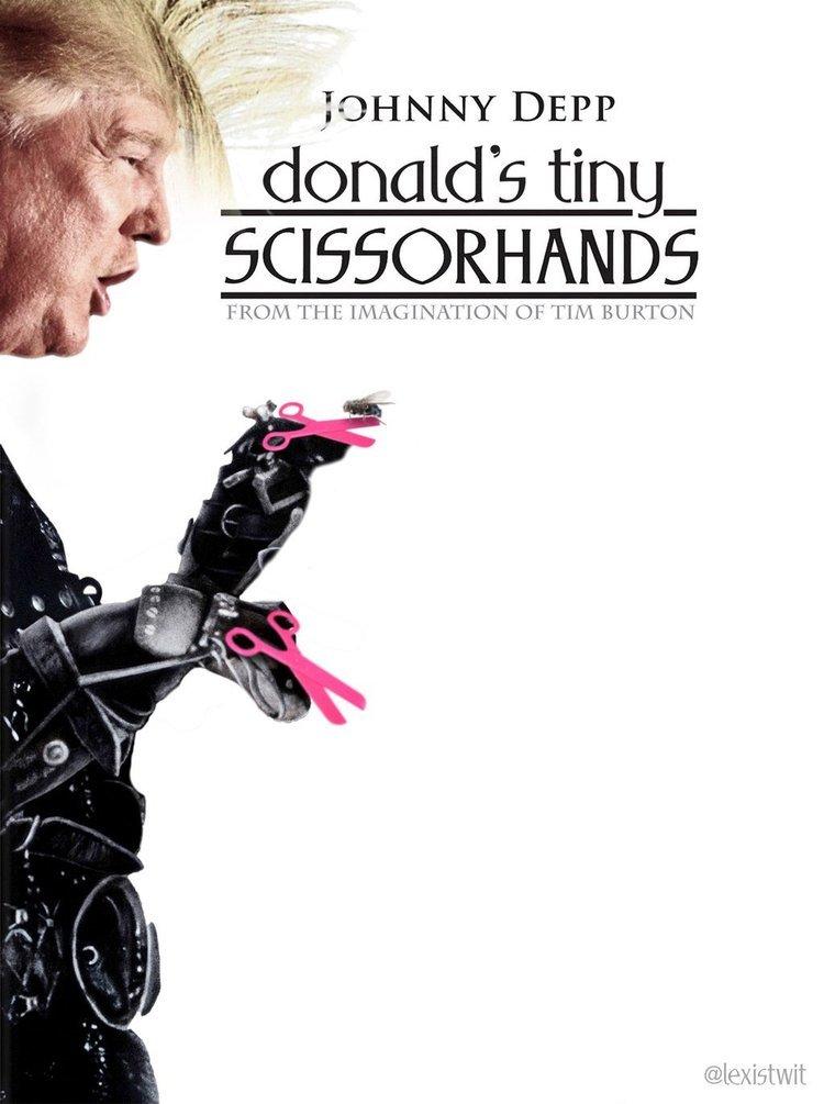Foto de Películas con Donald Trump (5/12)