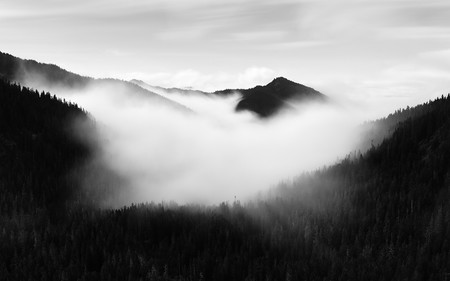Trucos Consejos Hacer Fotos Niebla Neblina 10