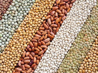Las legumbres con menos hidratos