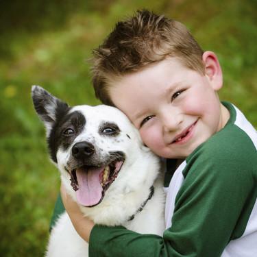 Mordiscos y arañazos de mascotas: cómo curarlas y qué precauciones tomar para evitarlas