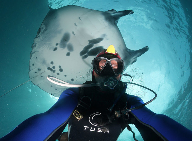 Sí, los selfies más épicos son aquellos que se hacen debajo del mar y con fauna marina