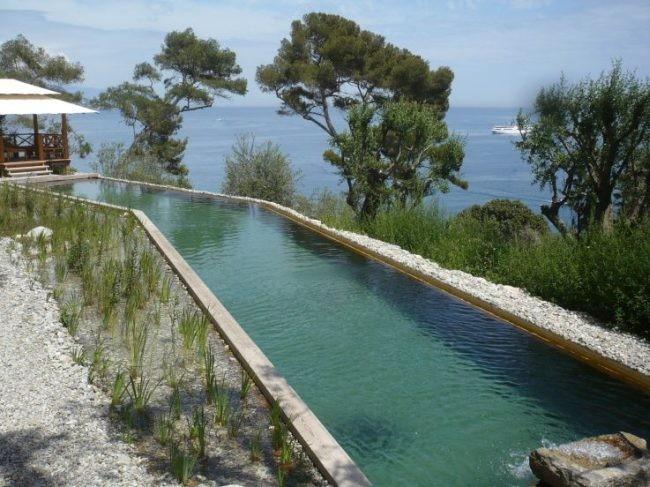 piscinas naturales una gran idea o un quebradero de cabeza