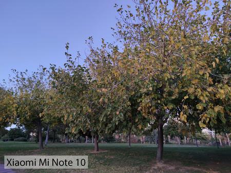 Xiaomi Mi Note 10 Auto Dia 02