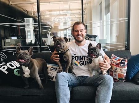 Amantes de los animales, hemos encontrado el trabajo perfecto para vosotros: viajar con perros y cobrar por ello