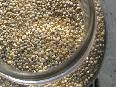 ¿Qué son las saponinas de la quinoa?