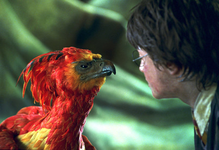 Harry Fenix
