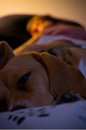 Por qué NO conviene utilizar tu hidratante con SFP como tratamiento de noche