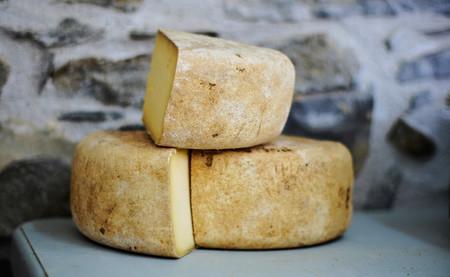 Tres milenios comiendo queso: el sorprendente papel del lácteo en la evolución humana