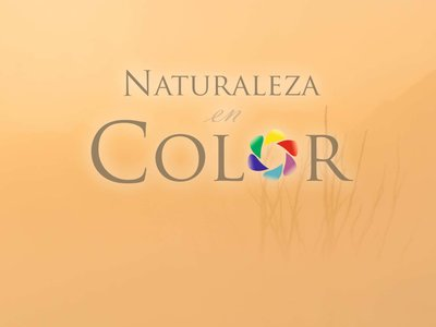 "Exponature: ""La naturaleza en color"", como nunca la habías visto"