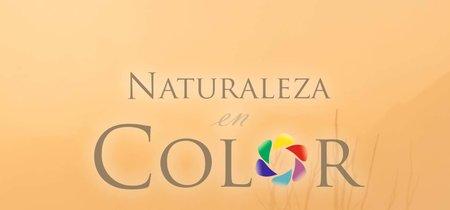 """Exponature: """"La naturaleza en color"""", como nunca la habías visto"""