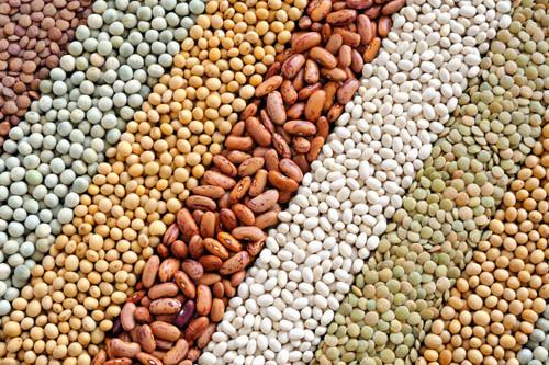 Algunos falsos mitos sobre las legumbres y los antinutrientes