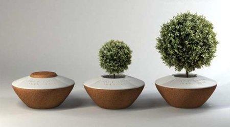 Ahora podemos plantar un árbol con las cenizas de un ser querido