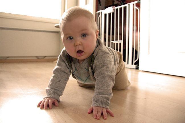 Estimular la psicomotricidad de 7 a 12 meses 2